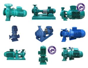 Castle pumps_Azcue pumps